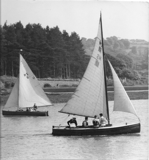 ms-8-and-17-off-plas-newydd